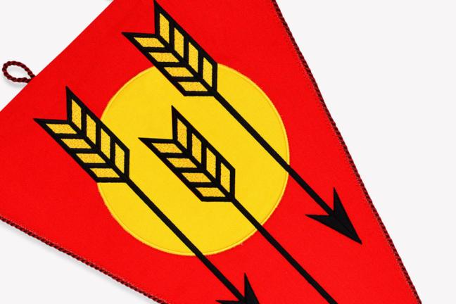 Vlajka Rychlé šípy
