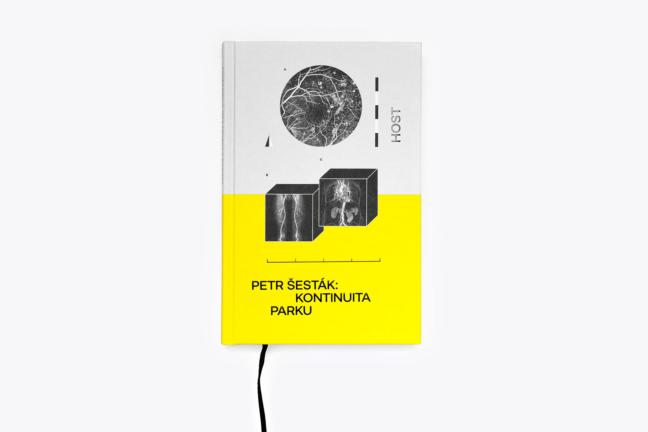 Petr Šesták: Kontinuita parku
